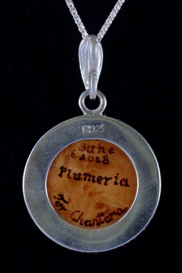 180606-plumeria-back